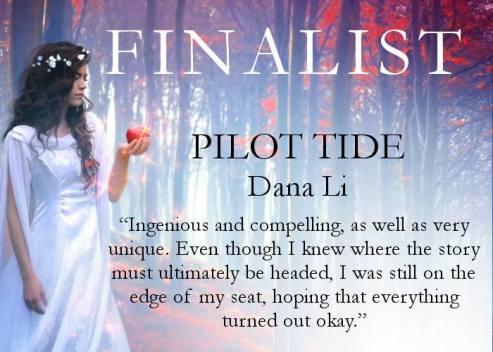 Pilot Tide-Finalist Photo